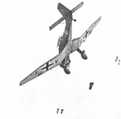 stuka dive bomber photo