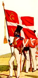 A Danish Standard Bearer from about 1848...